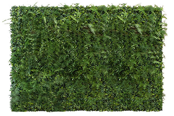 The Calypso: 12' Assorted Fern Wall