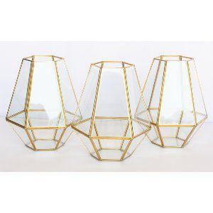 Gold Diamond Terrarium