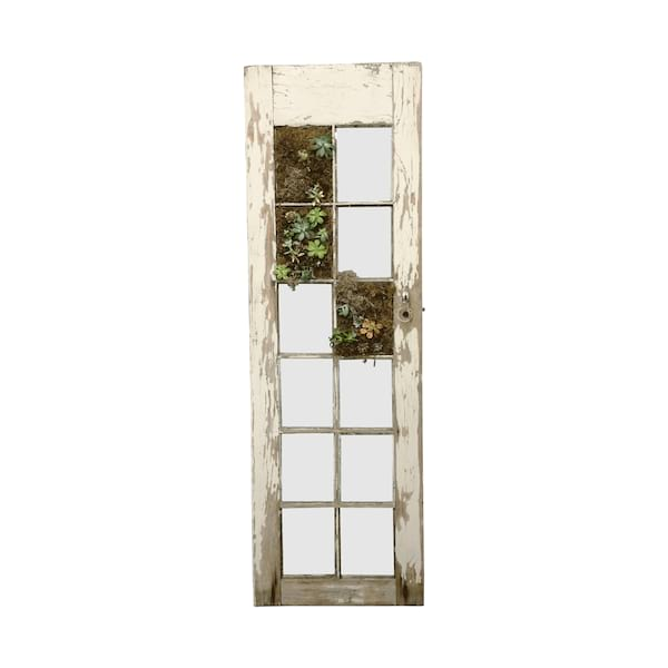 Succulent Door