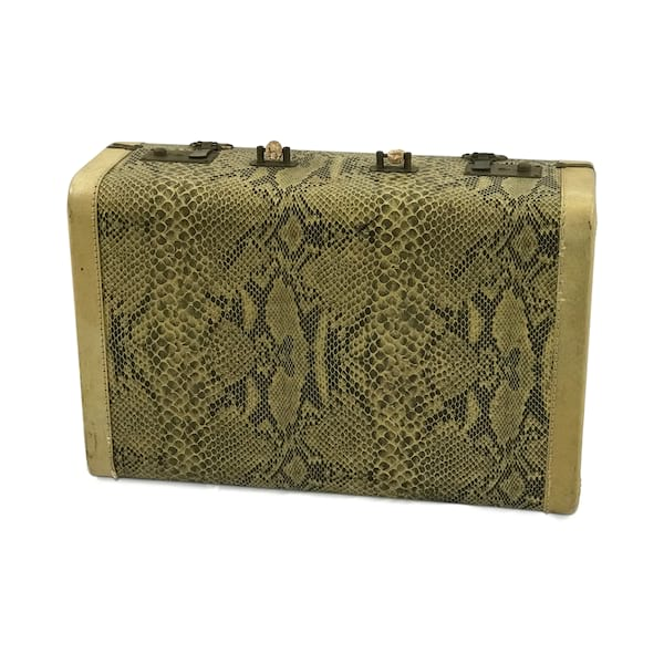 Snakeskin Luggage