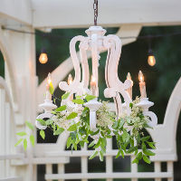 french chandelier (5 lights)