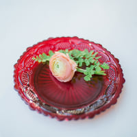 ruby red dessert plates