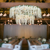 wisteria chandelier