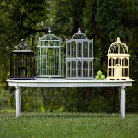 birdcage yellow