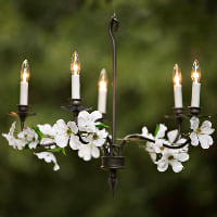 five light black chandelier