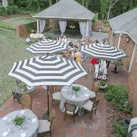 umbrella black and white