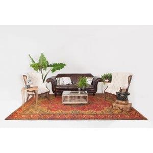 webster lounge
