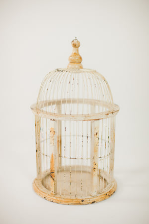 ivory birdcage