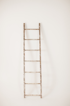 chippy single rung ladder