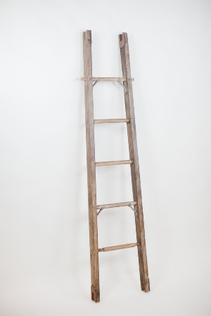 6' single rung ladder