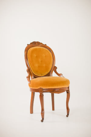 fauna chair