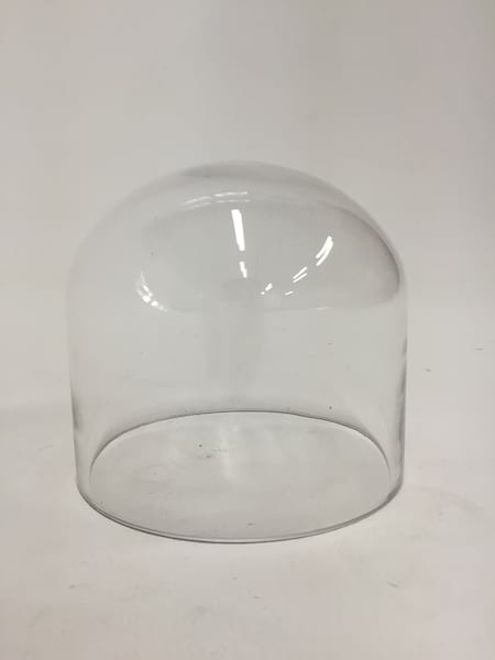 small glass dome cloche