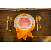 Faux Marble Dinner Plates 10.25