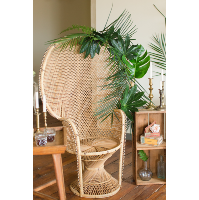 Honey Wicker Peacock Chair