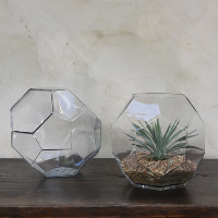 Glass Geo Terrarium - Large