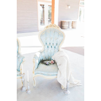 Baby Blue Victorian Chairs