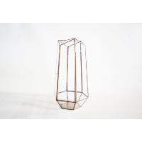 glass terrarium (large)