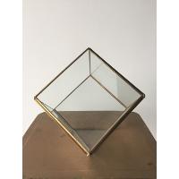 The Cubist Terrarium