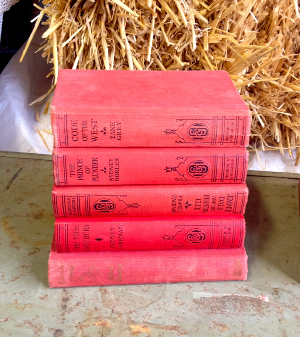 Stack of Red Vintage Books
