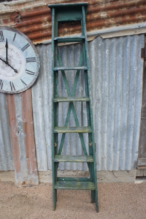 Verde Ladder