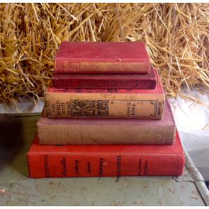 Stack of 4 red/brown vintage books