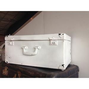 Peppermint  Suitcase