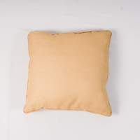 Buttercup pillow