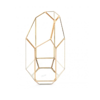 Gold geo tall terrarium