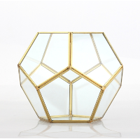 Gold Hex Terrarium