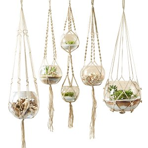 Macrame 5 Piece Plant Hangers
