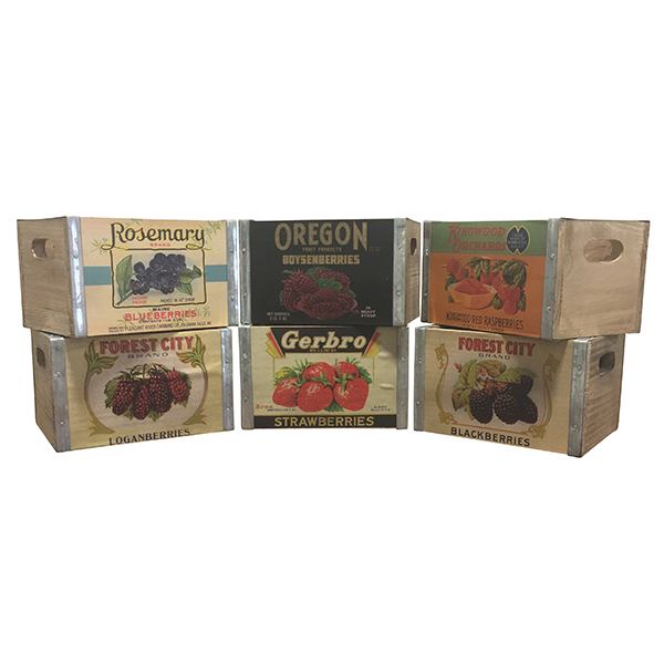 Vintage Berry Box Collection
