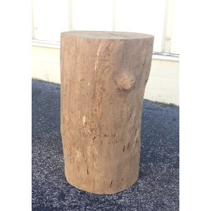 Natural Tree Stump End Table